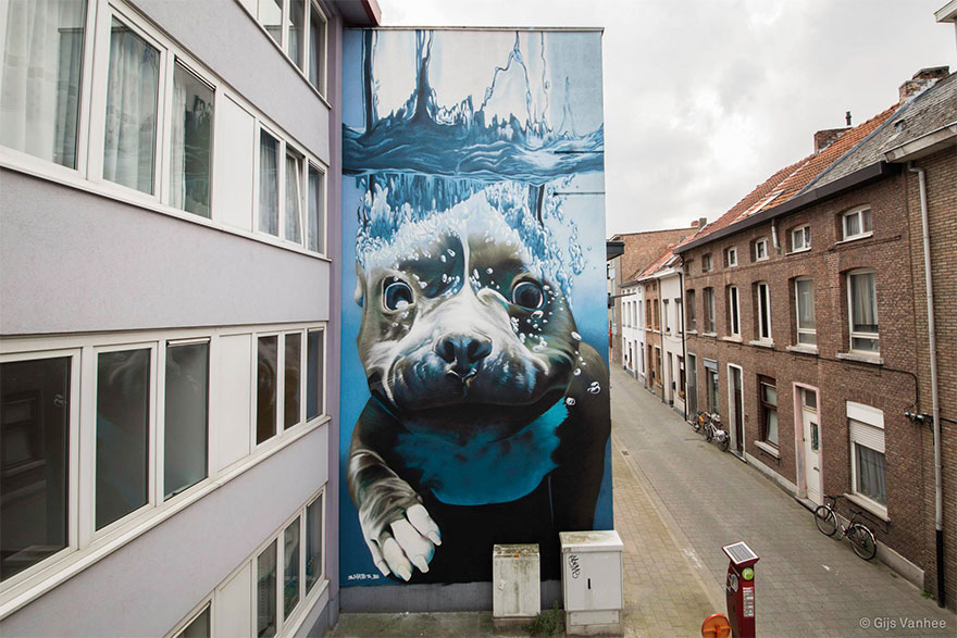 14095579294533 diving dog street art mural smates bart smeets 1 4 Story Street Art Mural Of A Dog Diving Underwater Unveiled In Belgium