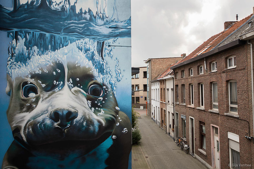 14095579303919 diving dog street art mural smates bart smeets 2 4 Story Street Art Mural Of A Dog Diving Underwater Unveiled In Belgium