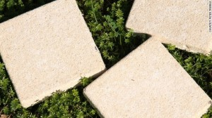 image103 300x168 Concrete Made From Bacteria and Urine: Would You Live in a House Made of It?