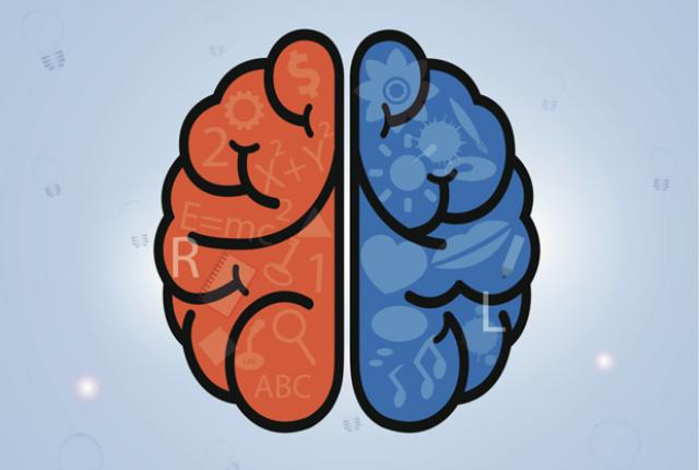 453466147 0 Left brain vs Right brain: Does it really define your personality?