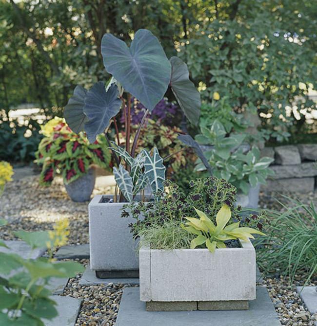 18 980x 20 Creative DIY Flower Pot Alternatives