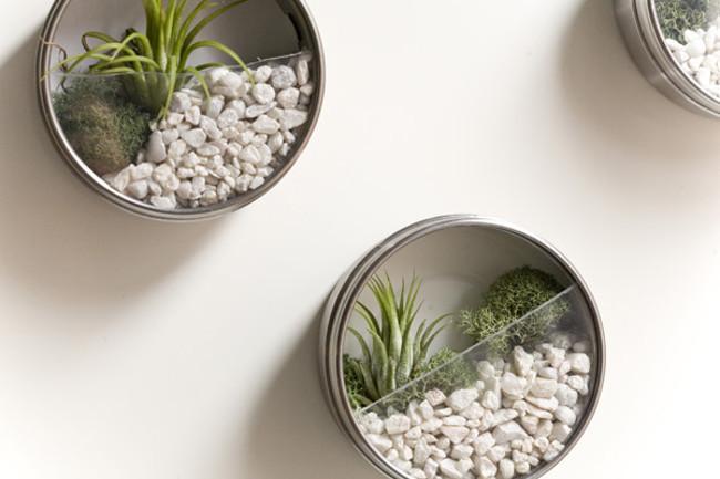 31 980x 20 Creative DIY Flower Pot Alternatives