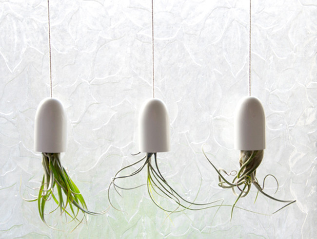 84 980x 20 Creative DIY Flower Pot Alternatives