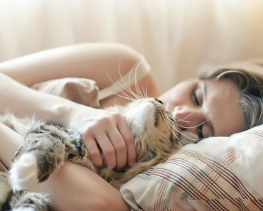 Why do cats like to sleep with their owners
