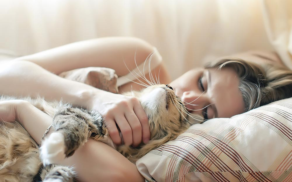 Why do cats like to sleep with their owners Why do cats like to sleep with their owners?